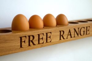 engraved-wooden-wall-egg-tray-makemesomethingspecial.co.uk